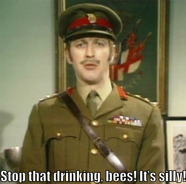 "Monty Python's The Colonel says, ""Stop that drinking, bees! It's silly!"""